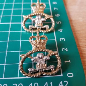 Staffordshire Regiment collar badge