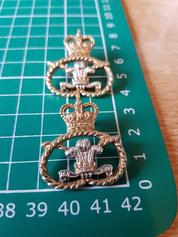 Staffordshire Regiment collar badge