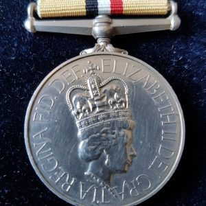 Operation Telic Iraq Medal Grenadier Guards
