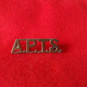 Army Physical Training Staff Corps Shoulder Title