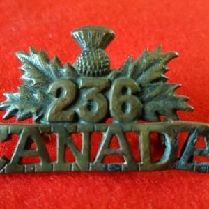 236th Battalion Canadian Army